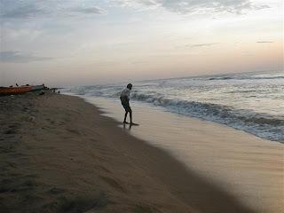 Image result for besant nagar beach