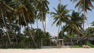 plus belle plage du sri lanka