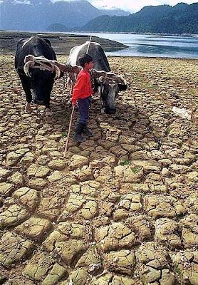 Sequía Guatemala