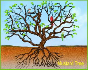 All the good: Mustard Seed