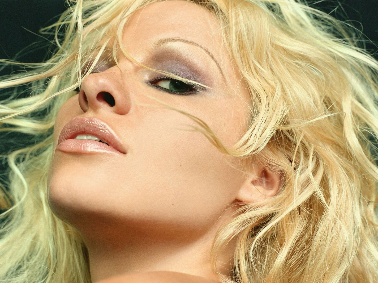 Pamela Anderson Hot Wallpapers Free Download Bikinisexy -4052