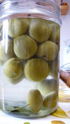 pomodori verdi in salamoia