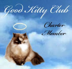 Good Kitty Club