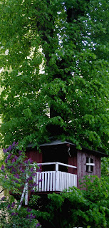 cabane de jardin design