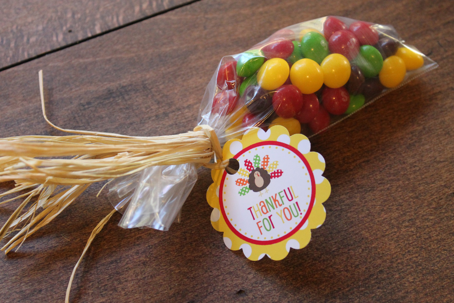 jelly belly india