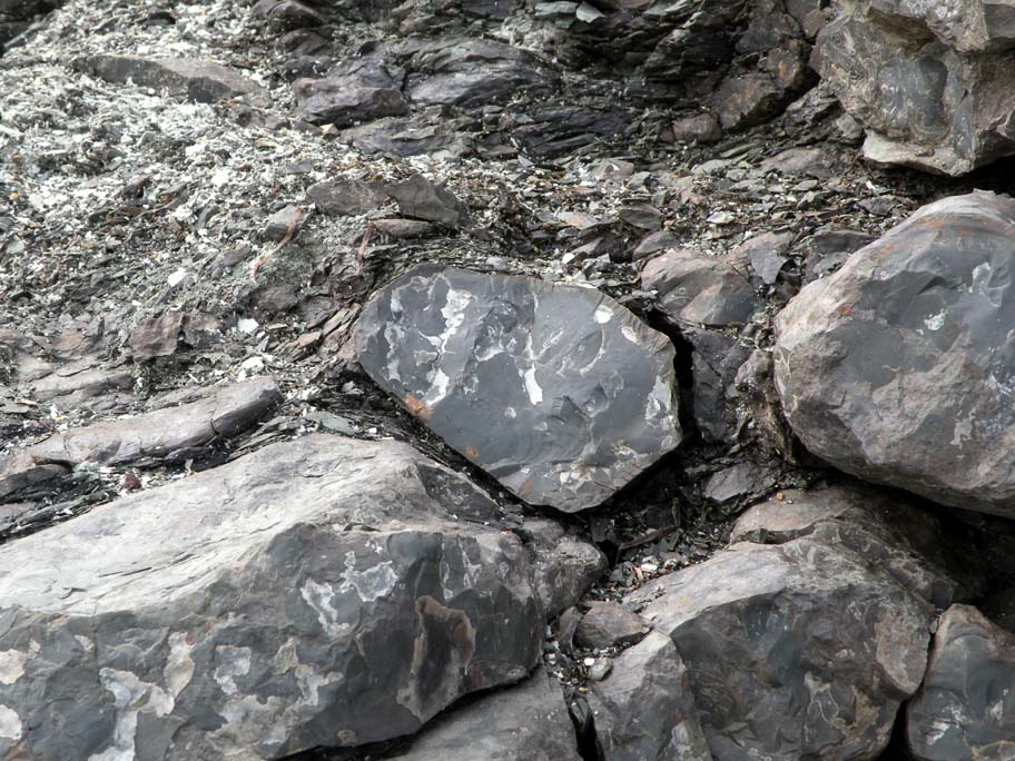 what is chert rock used for