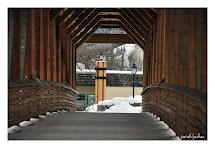Shutter Bug Golden Bc - Timber Frame Bridge