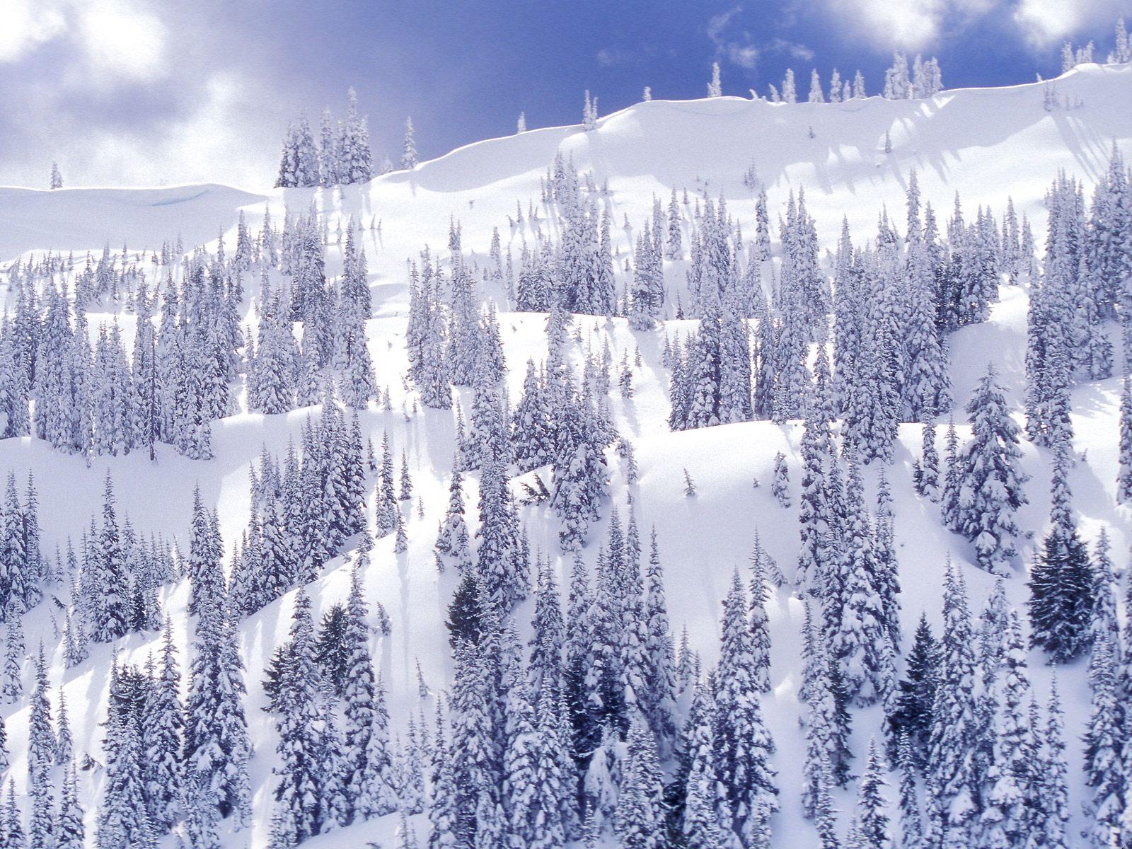 s1600 winter achtergronden winter - photo #9