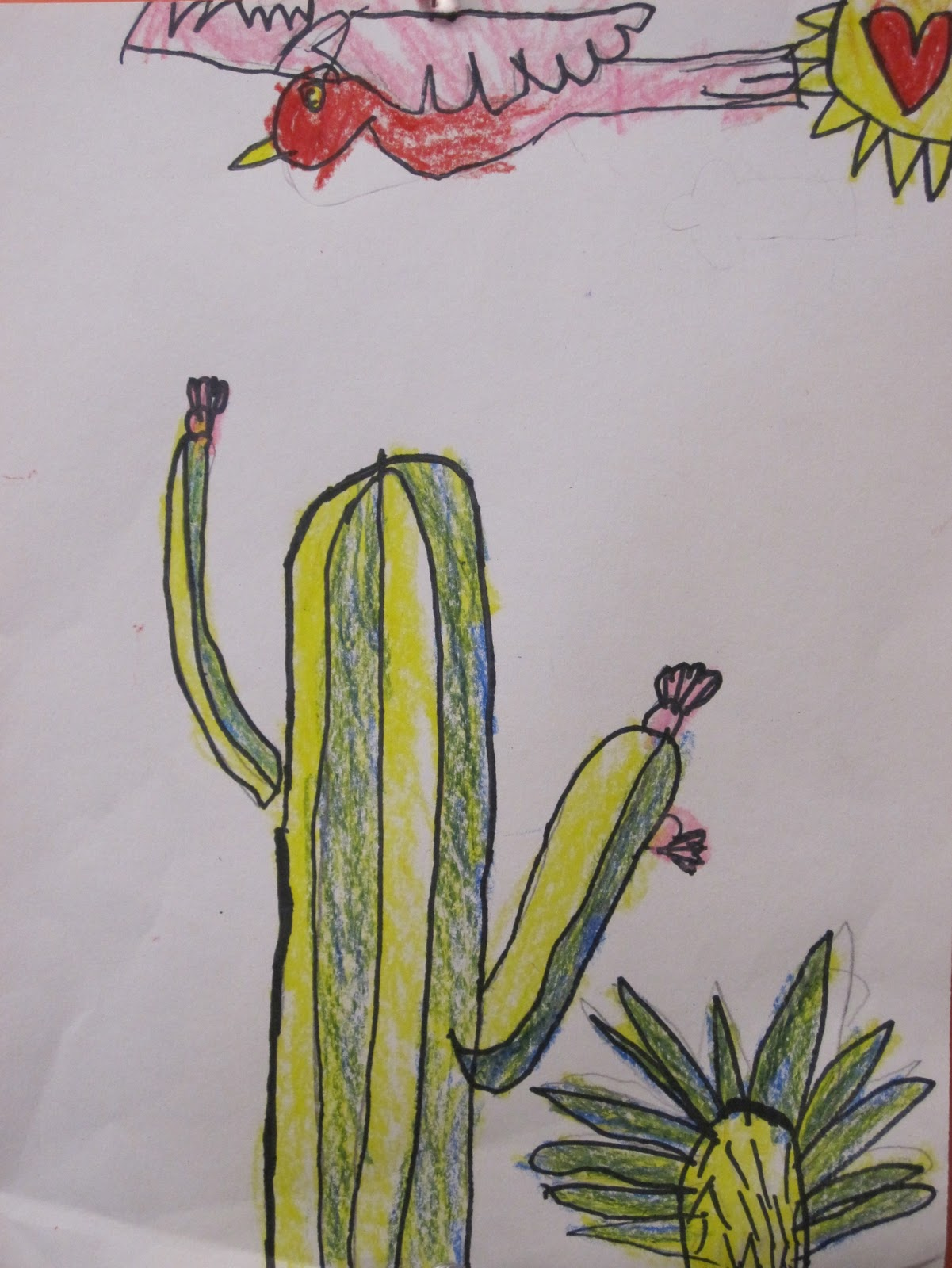 Shine Brite Zamorano Look Out For Those Cacti
