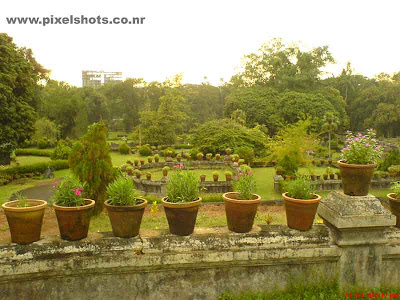 picture of garden landscaping in the front of hill palace kochi ernakulam kerala