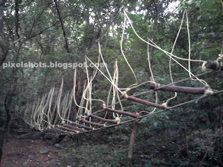 bridge of Burma in adventure zone thenmala kerala india,burmese rope bridge for tourists,kerala adventure tourism facilities,eco tourism attractions of thenmala kollam kerala india