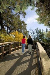 Walking is a good exercise for improving your health. Photo courtesy USDA, ARS