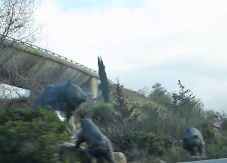 Los tres osos madrileños de la M-40