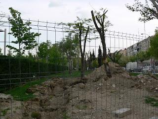 El Parque de la Arganzuela ¿Desastre natural o artificial?