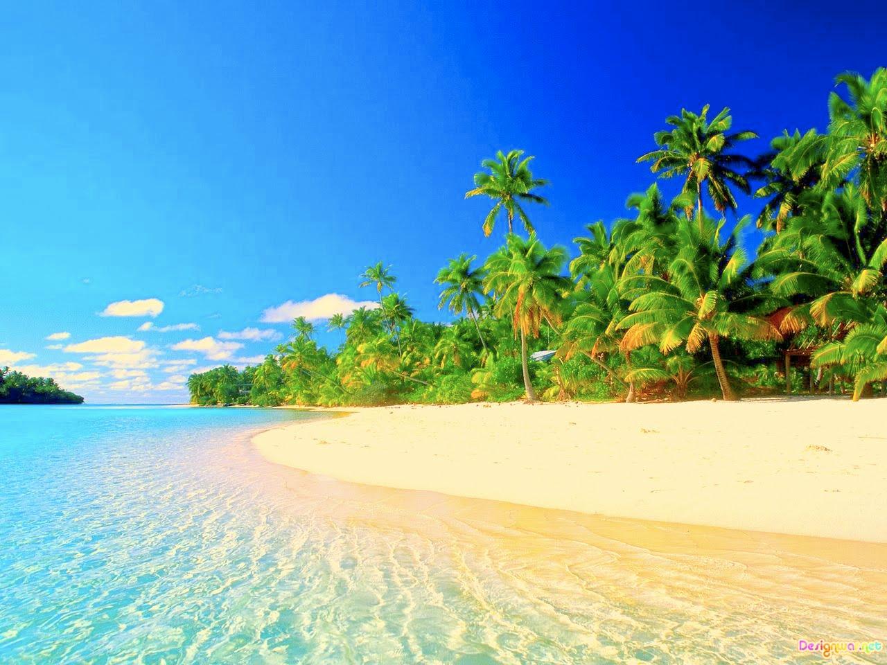 MorganD2013: Tropical Beach
