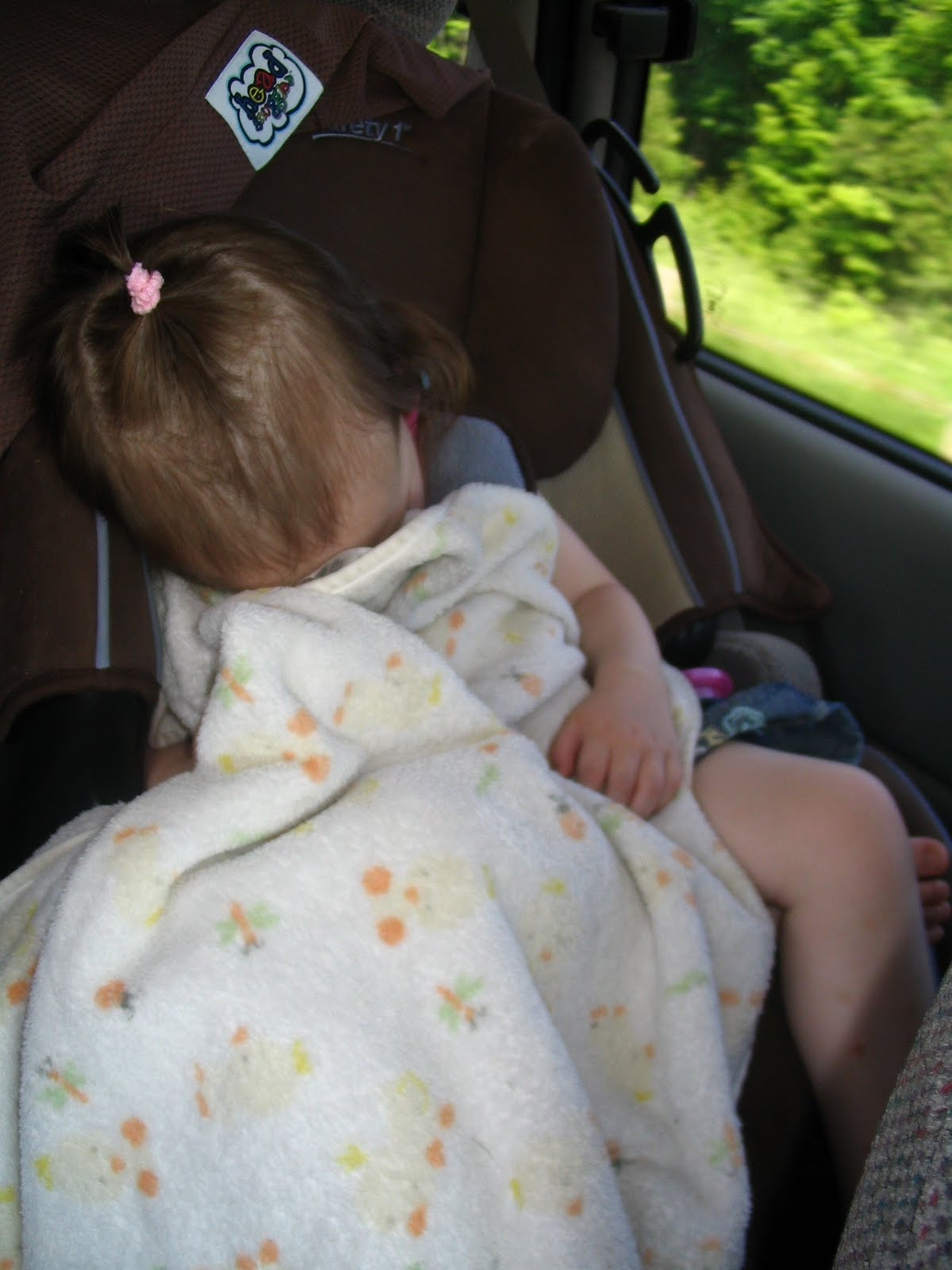 Ones Heads From Slumping Over When Sleeping In A Carseat Or Stroller But I Had Several Questionsplus Wasnt Sure What My Girls Would Think Of It