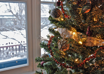 Notice Quiet Nature: Decorating for Christmas Naturally (2009)