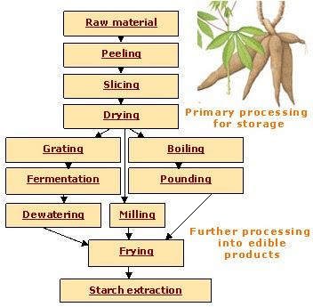 Cassava Processing Toolkit - Entrepinoys Atbp  Business