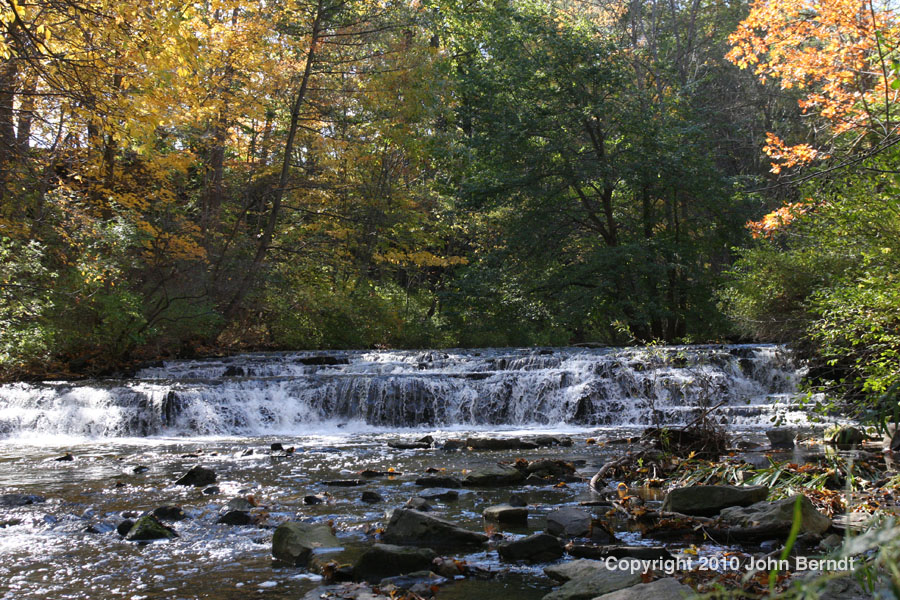 Nature Park Rochester Ny