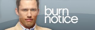 Assistir Burn Notice Online (Legendado)
