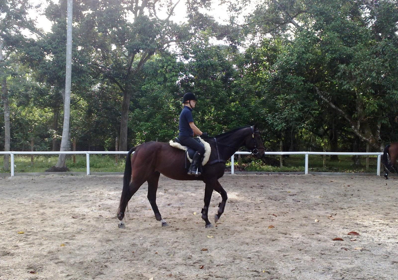 As Equestrian Centre Kelas Menunggang Kuda