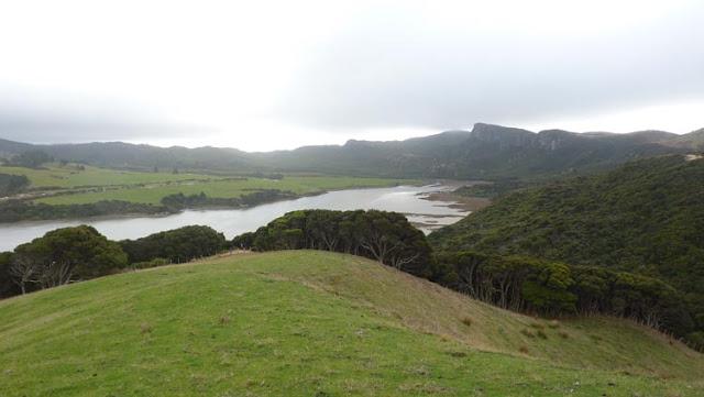Mires donde mires, el entorno de Golden bay en Nueva Zelanda es fascinante