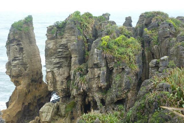 Imagen de las Pancake Rocks de la West Coast en la isla Sur de Nueva Zelanda