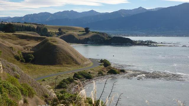 Se disfruta mucho paseando por la península de Kaikoura