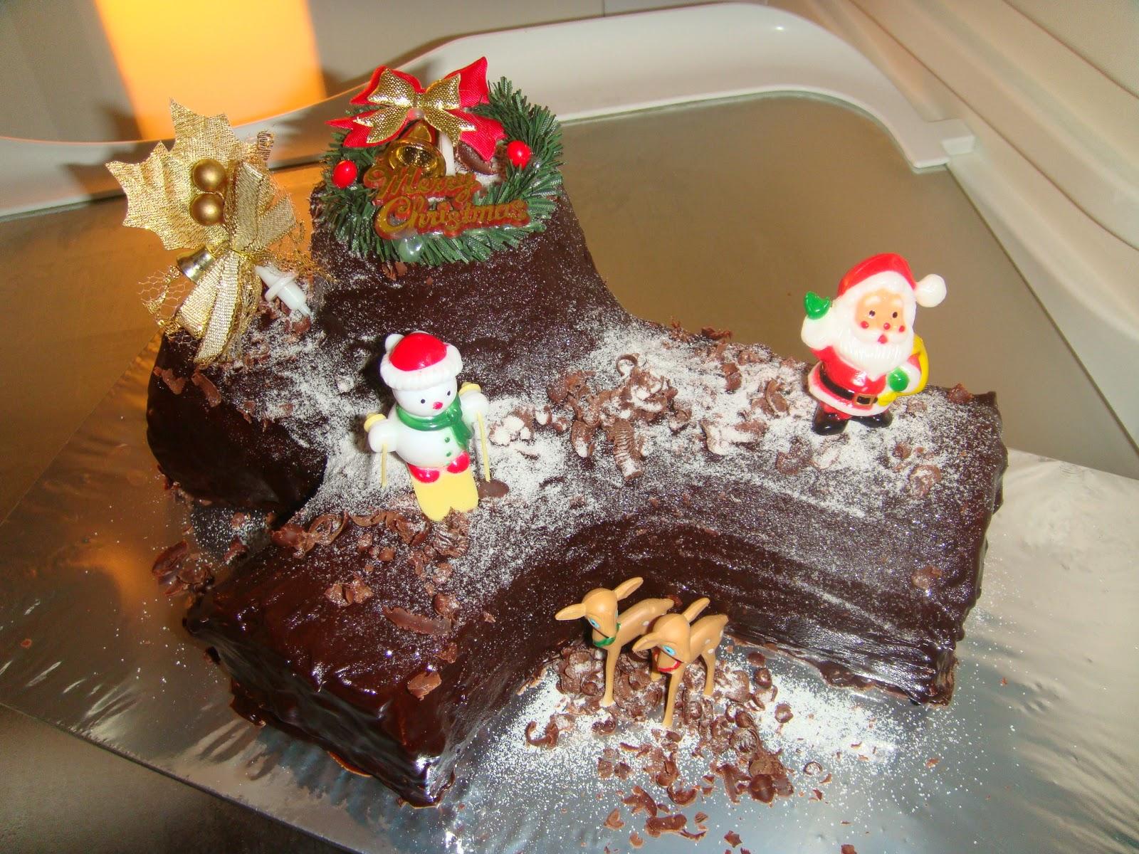 Yummy Baking Christmas Blueberry Chocolate Log Cake Y2010