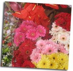 Las Galletas Flower Festival