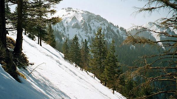 Karkopf und Feichteck vom Aufstiegsweg zur Hochries
