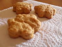 biscotti zenzero agrumi vegan