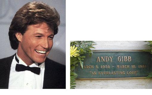 Andy Gibb Todesursache