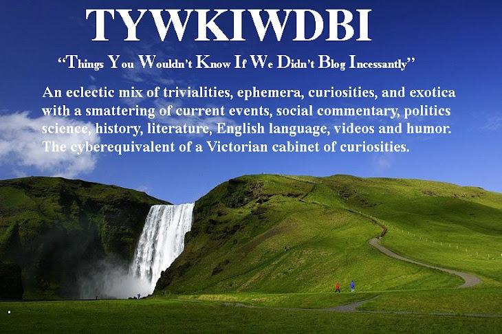 TYWKIWDBI Title Page