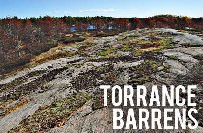 Torrance barrens trails