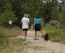 Dog Walking - Leads to Extra Money