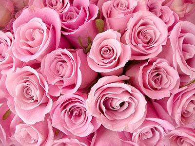 Resultado de imagen de la vida en rosa