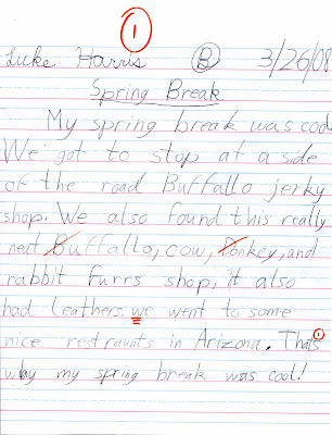 scott s ravings  luke s what i did on spring break essay