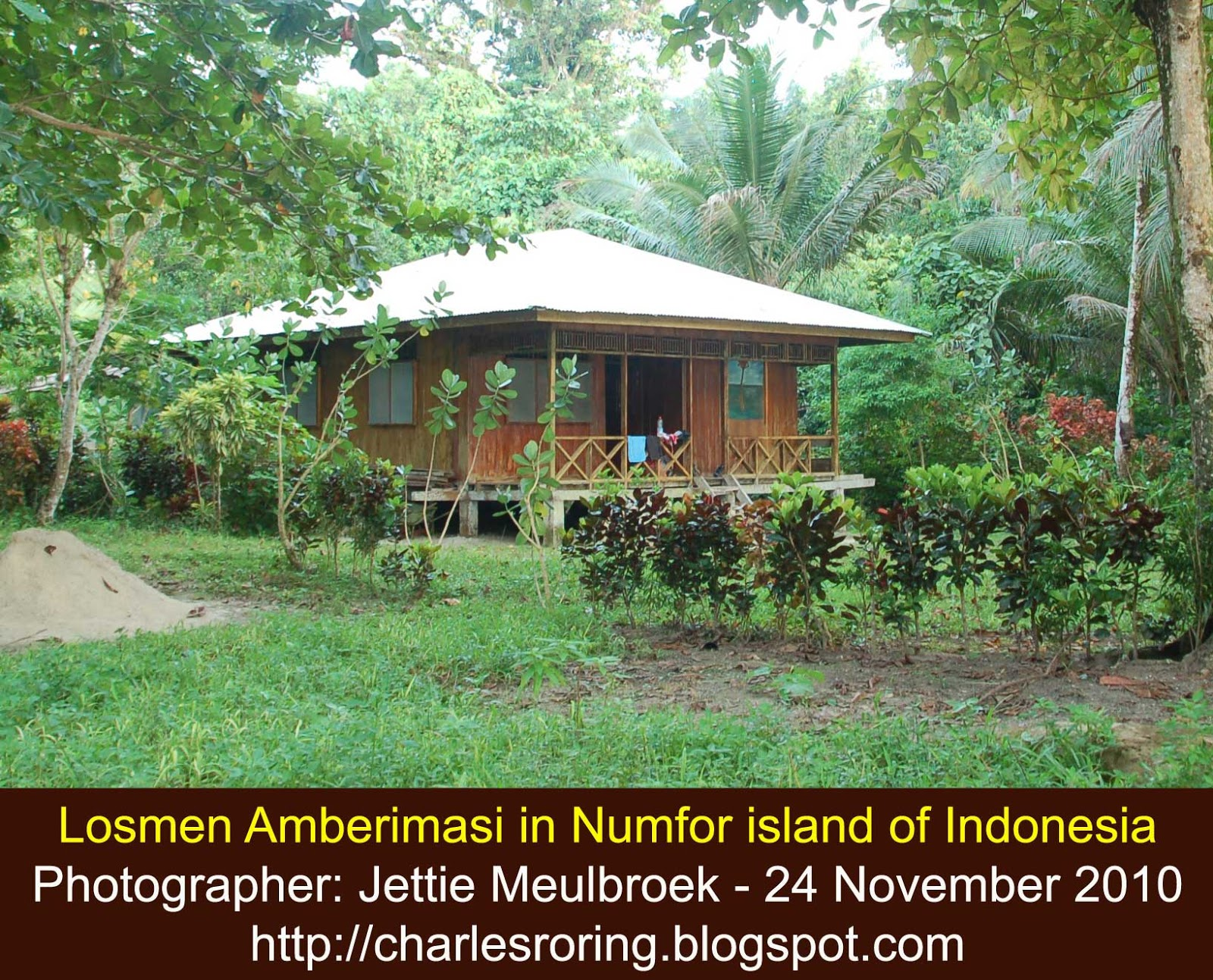 Raja Ampat Reef Wooden House Design Of Losmen Amberimasi