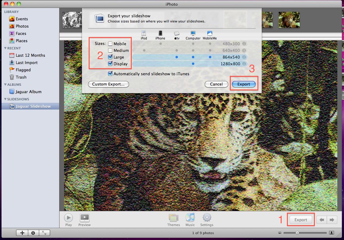 Digital Glossary Slide Show View