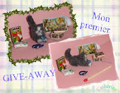 Mon premier GIVE-AWAY 29/01/2011