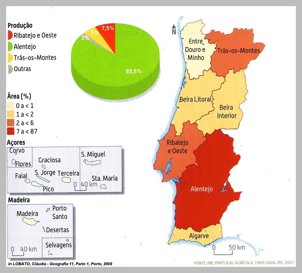 mapa das regioes de portugal continental Qual o melhor mapa para as futuras regiões administrativas de  mapa das regioes de portugal continental