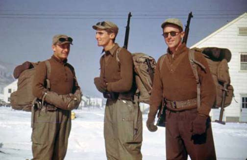 Four Bees: 10th Mountain Division, US Army, WW2
