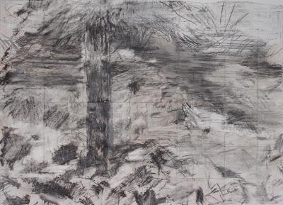 Alexander Johannes Kraut Baum II, 2007 pencil/brickdust 51 x 69 cm