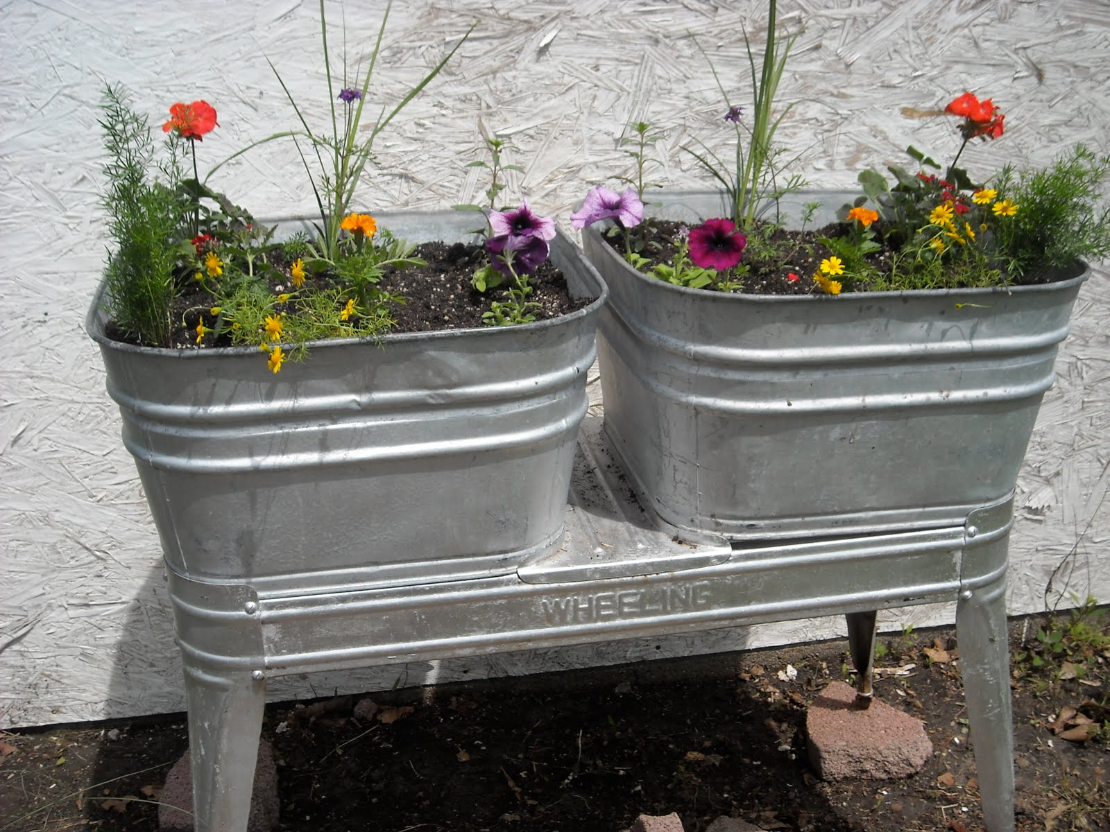 The Angry Pincushion: Creative Gardening: Unique Planters
