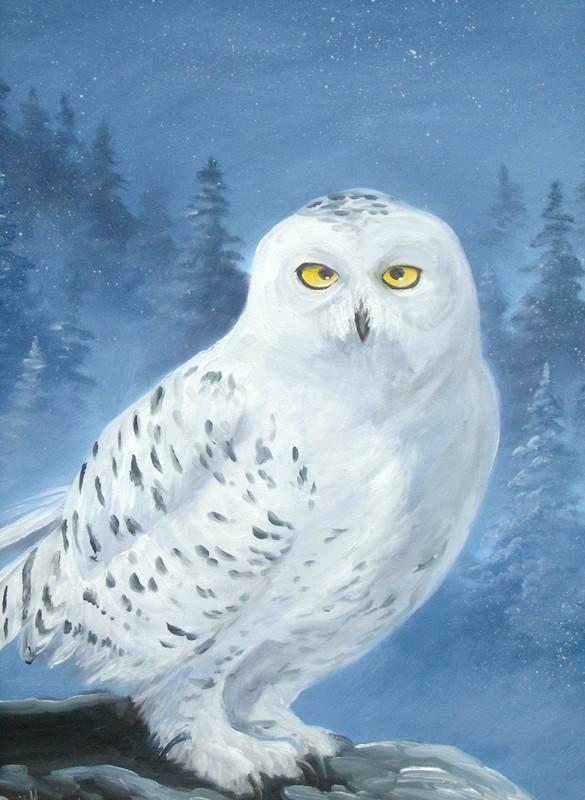 bradfield art: Owls in Art