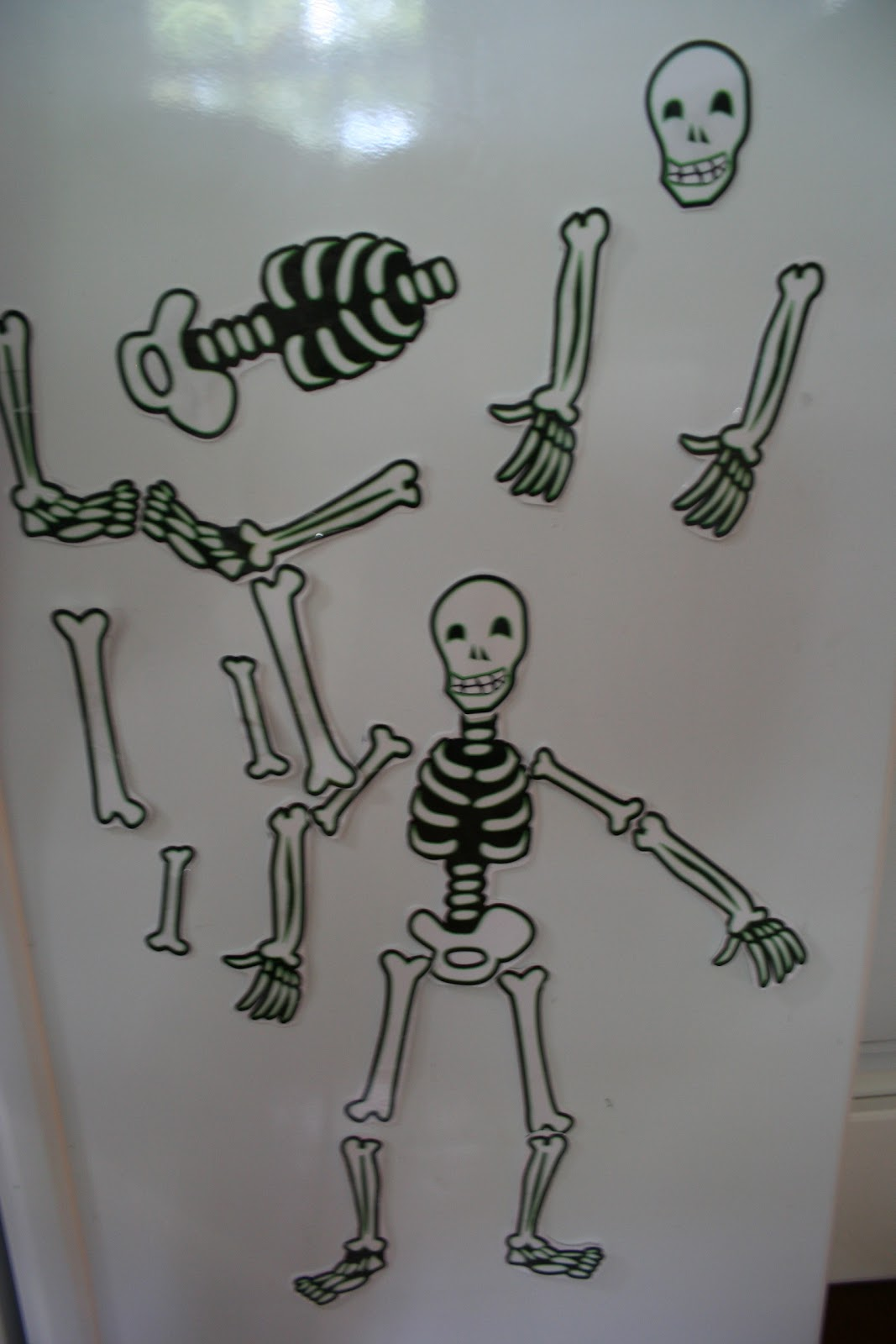 Pink And Green Mama Preschool At Home Fridge Skeleton And Learning About The Human Body