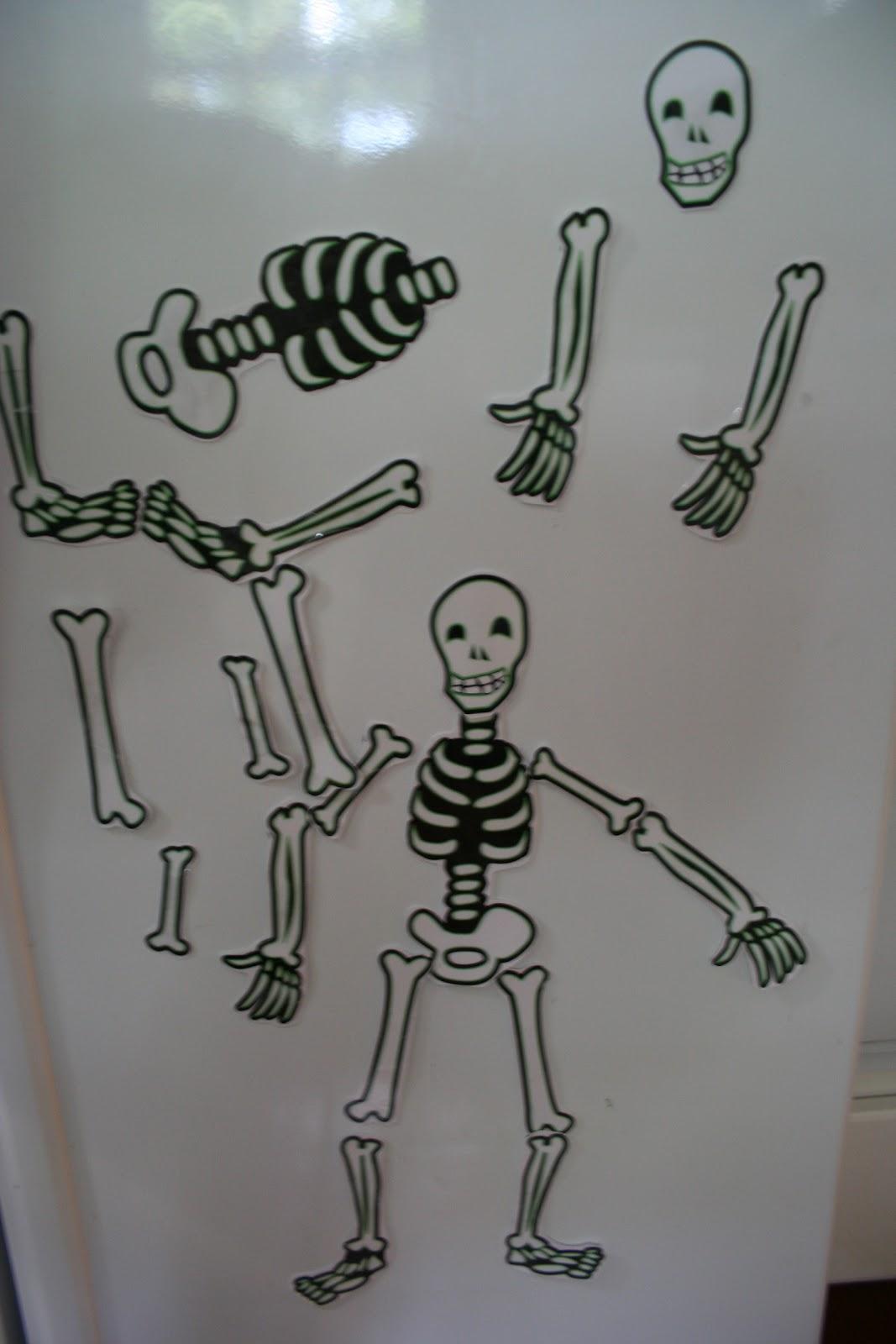 Pink And Green Mama Preschool At Home Fridge Skeleton