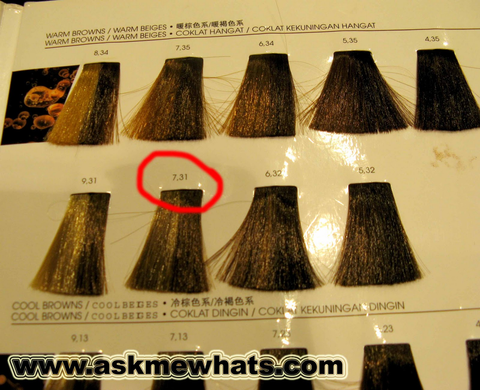 Inoa hair color shades chart india best hair color inspiration 2018 l oreal professionnel inoa hair colour review nvjuhfo Image collections