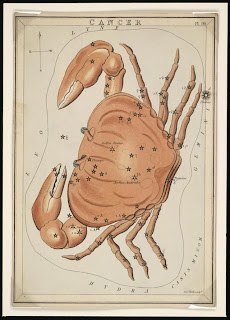 Astronomical chart showing Cancer the Crab, Jehoshaphat Aspin. London : 1825